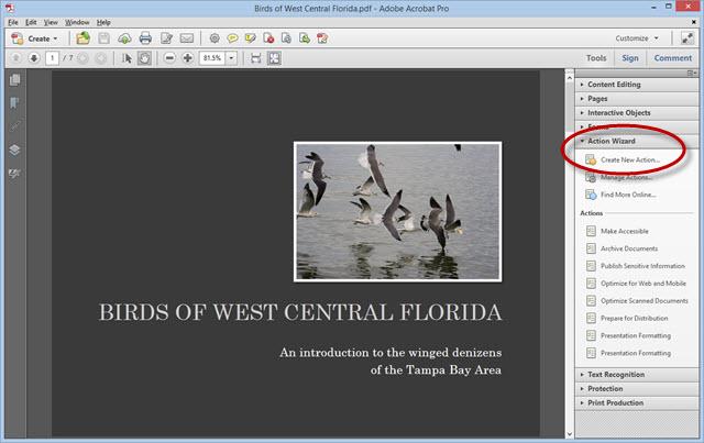 Adobe Acrobat Actions
