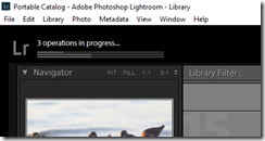 Lightroom Import Processes