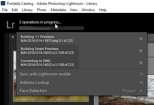 what are smart previews in lightroom