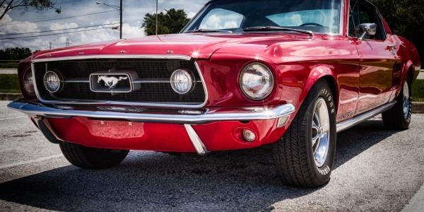 Pearce Mustang